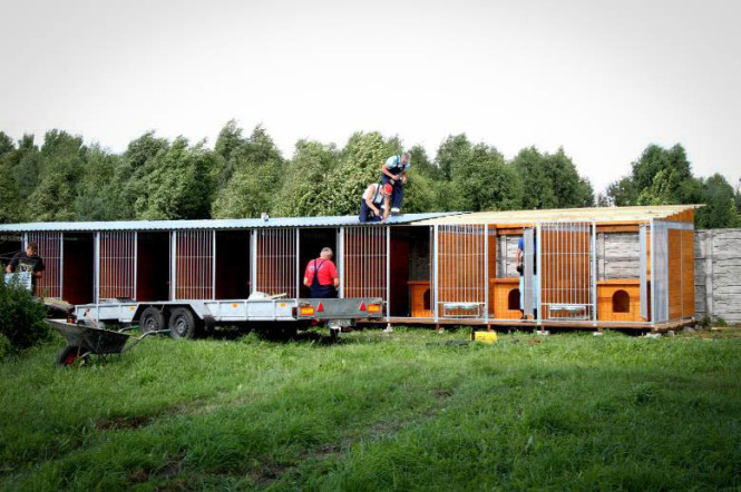 Budujemy 16 drewnianych boksów